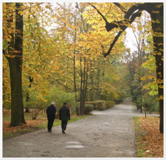 couple-elder-walking-autumn-325